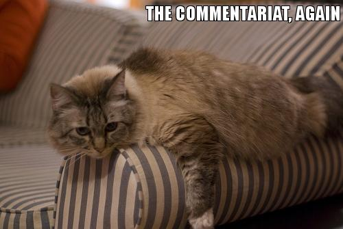 The commentariat