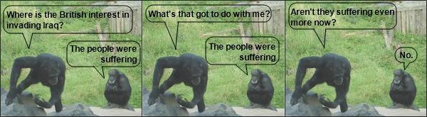 The monkeys do the Iraq