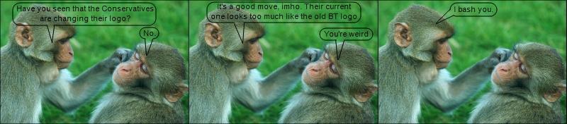 The monkeys do the logo