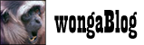 wongaBlog
